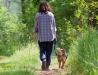 kan jag vaccinera mitt husdjur mot fästingar?